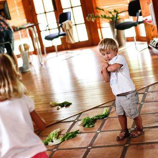 Los planos De Desarrollo Según Montessori