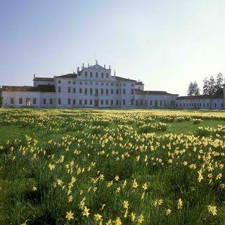 Il giardiniere di Villa Manin (1)