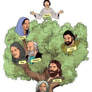 Currículo del Niño Jesus