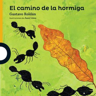 El camino de la hormiga,cuento infantil para niños y niñas