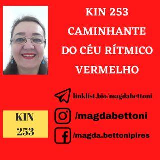 KIN 253  CAMINHANTE DO CÉU RITMICO VERMELHO - 20ª Onda Encantada do Tzolkin