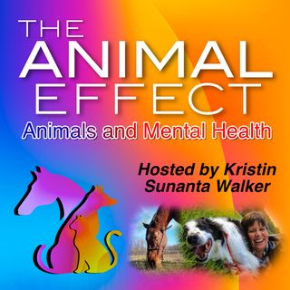 Animal Assisted Therapy Programs
