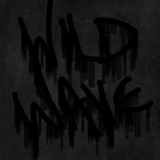 Wild Wave Radio: December 22, 2k17