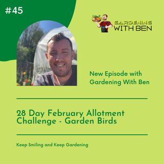 Episode 45 - 28 Day February Allotment Challenge - Garden Birds