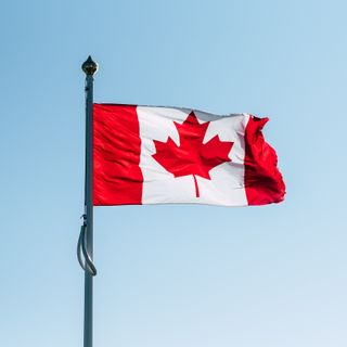 The Canadian Pain Task Force: An Action Plan for Pain in Canada