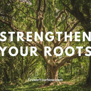 2307 Strengthen Your Roots