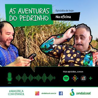 Episódio 4 As aventuras do Pedrinho.mp3
