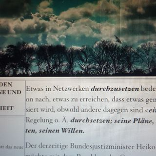 Meinungsfreiheit Nach Maas. Spaß Mit Heiko
