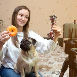 Des box alimentaires au pet-sitting: comment le marché animalier prospère avec le numérique