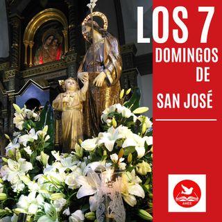 LOS SIETE DOMINGOS DE SAN JOSE