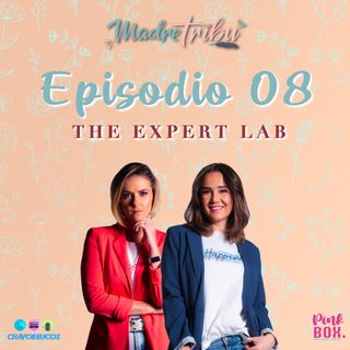 Ep 08 The Expert Lab