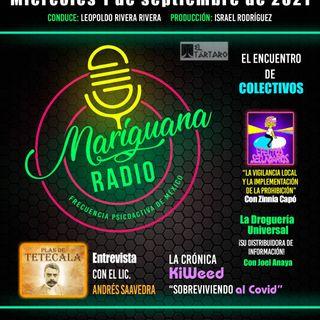 Mariguana RADIO Frecuencia psicoactiva de México