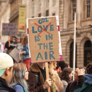 CO2 cose da dire - La nazione delle piante