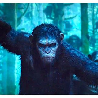 CR #69- Dawn of the Planet of the Apes; Steve James Interview for 'Life Itself'