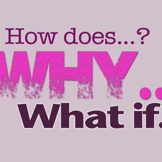 #17: Why Ask Why?