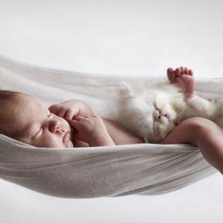 Efecto Mozart (Música Clásica Para Bebés) - Larga Duración - Para Dormir Y Calmar Al Bebé -