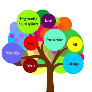 CÓMO FUNCIONA LA PROGRAMACIÓN NEUROLINGÜÍSTICA/Desarrollo Personal