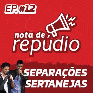 #12 Separações Sertanejas