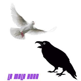 Entre cuervos y palomas