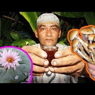"Ho provato l'Ayahuasca - La droga ""Spirituale"""