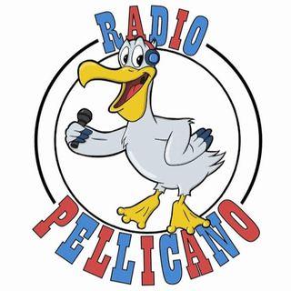 Radio Pellicano