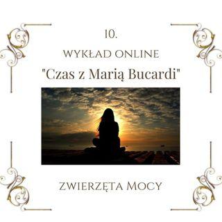 """Wykład """"Czas z Marią Bucardi"""" nr 10. Przesłania malutkich Zwierząt Mocy (Zięba, Rudzik), linia energetyczna na Ziemi niebieskiego promienia"""