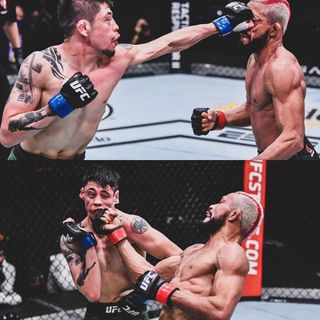UFC 256 - Figuereido vs Moreno