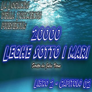 20000 Leghe sotto i mari - Parte 2 - Capitolo 02