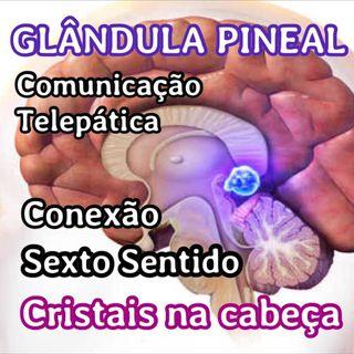 Glândula Pineal, nossa antena telepática.