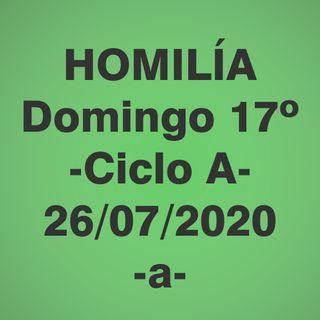 Homilía domingo 17 ciclo A - 26/07/2020 -a