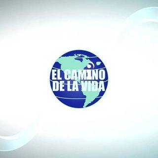 El Camino de la Vida | Cornelio Rivera