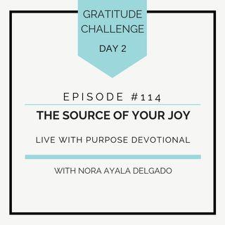 #114  GRATITUDE: The Source of Your Joy