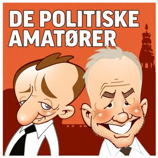 De politiske amatører - Om Bernie Sanders - Elbiler - Danske mænd