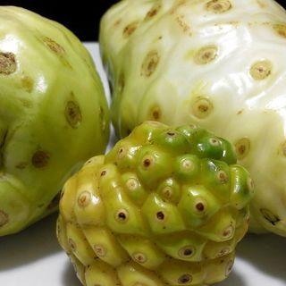 Health benefits of noni fruits