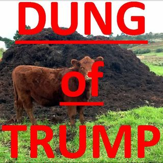 Dung OF TRUMP Family and Republicans! You are not Americans. Lets have a Contest!