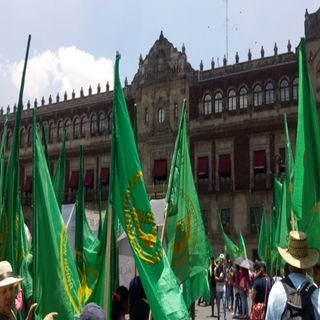 Frente Autentico del Campo marchará a Palacio Nacional