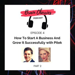 4. How To Start A Business And Grow It Successfully With Pitek - Part 2