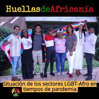 Situación de los sectores LGBT-Afro en tiempos de pandemia