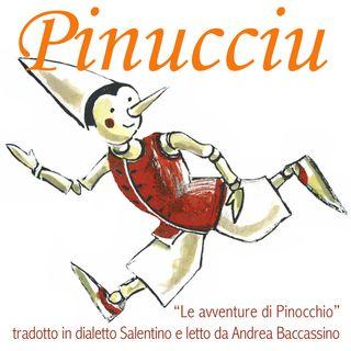 Pinucciu