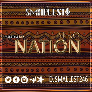 AfroNation Freestyle Mix | DJ SMALLEST
