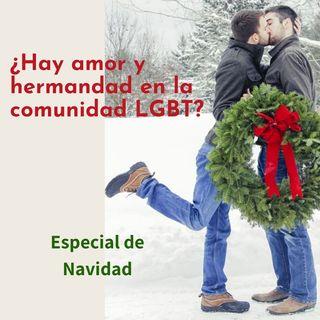 ¿Hay amor y hermandad dentro de la comunidad LGBT?
