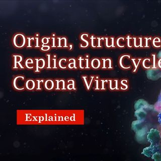 Origin,Structure and Replication cycle of corona virus explained in detail