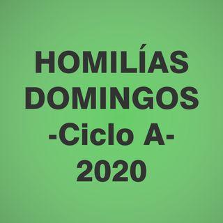 Homilías Domingos - Año 2020