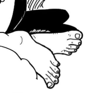 N°806: Cagne e piedi marci