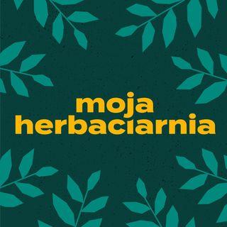 Moja Herbaciarnia: czy herbata z cytryną jest zdrowa oraz jak pobudza herbata a jak kawa?
