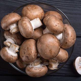 Mushroom, Weed and Toilets