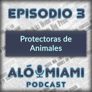 Aló Miami- Ep. 3 - Protectoras de Animales