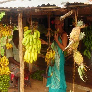 Odc.3 SriLanka - tęczowe banany i ciasteczka z cynamonem