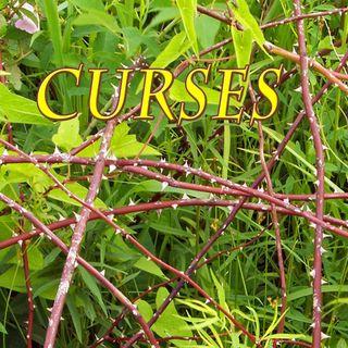 The Curses, Genesis 3:16-19