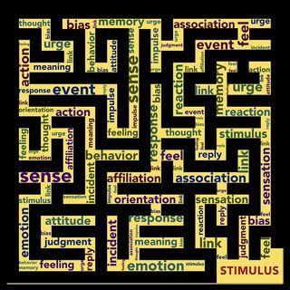 03 LifeX - Il dimagrimento, lo stress e l'attenzione ai dettagli